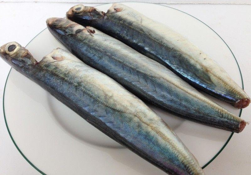 cá nục tươi