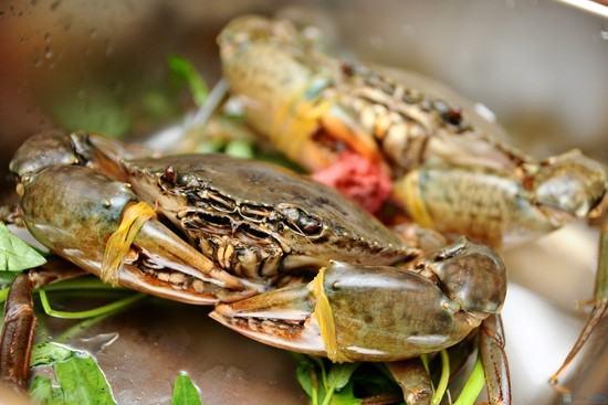 Cua biển rất giàu dinh dưỡng, được nhiều người ưa chuộng