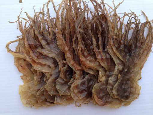 khô bạch tuộc